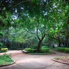 Parque Severo Gomes visto de cima